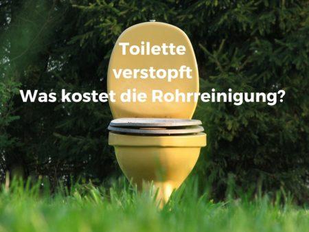 Kosten für Rohrreinigung eines Toiletteabflusses